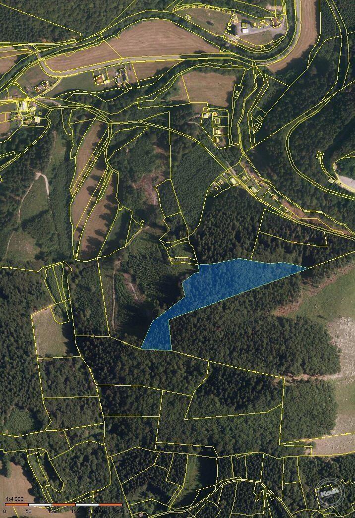 Prodej podílu 2/3 lesního pozemku v k.ú. Bystřička o výměře 19 897 m2
