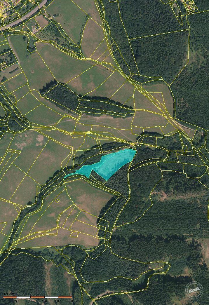 Prodej lesního pozemku o výměře 11046 m2 v k.ú. Neubuz