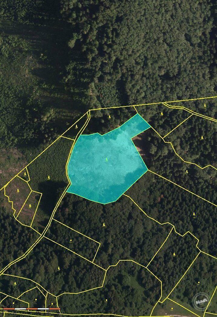 Prodej lesního pozemku o výměře 14 246 m2 v k.ú. Janová, Vsetín