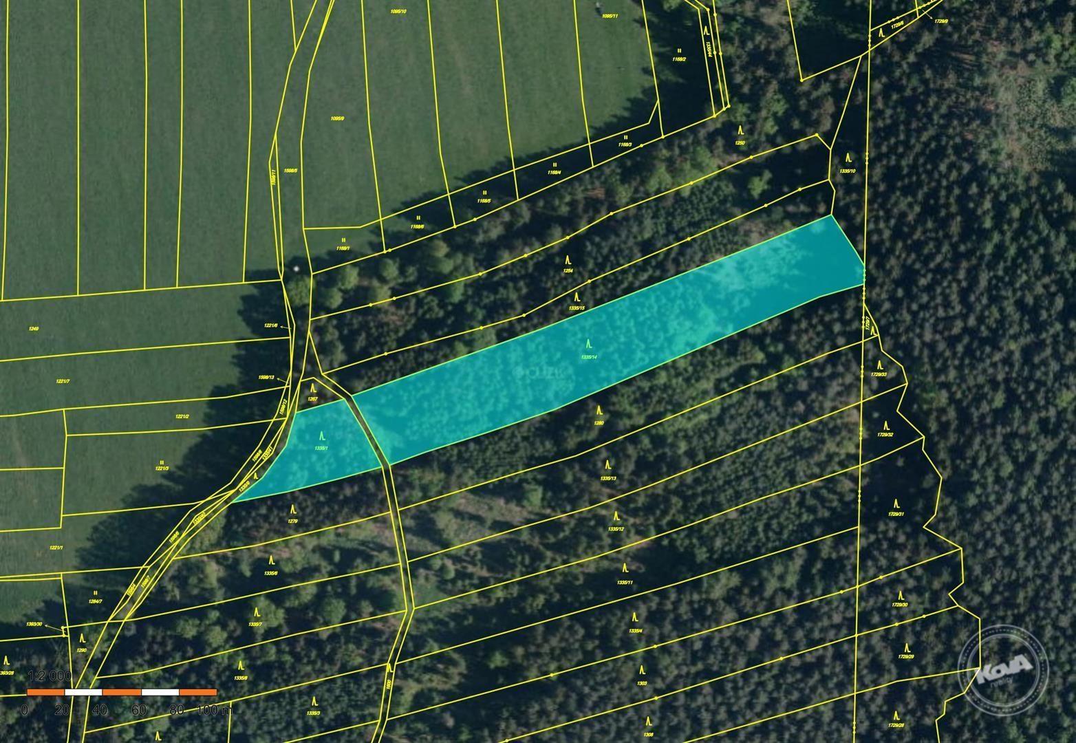 Dražba lesních pozemků cca 22 000 m2, kú. Strážkovice